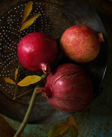 Winter Pomegranates