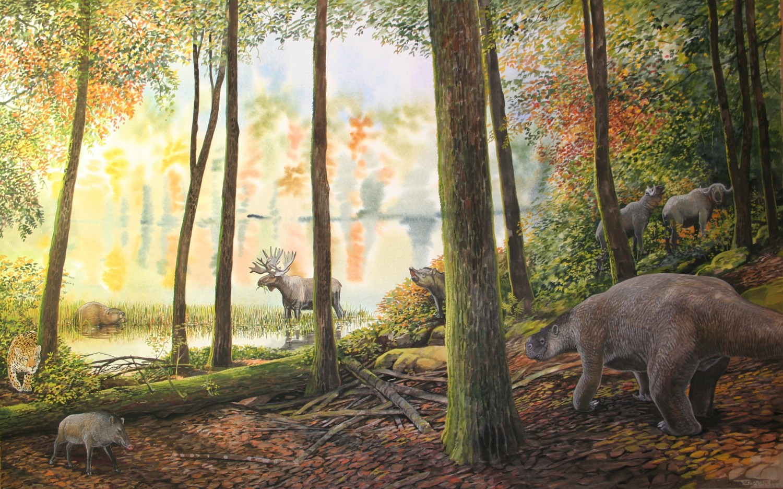 Stag Moose Jefferson S Ground Sloth Giant Beaver Jaguar