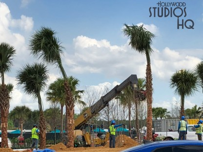 Construction efforts continue on the much anticipated future Disney resort bus loading and unloading areas. Additional roadway paving and new concrete walkways are completed while new overhead lighting and cooling fans are visible. Crews are planting foliage as well as positioning large trees by crane in the surrounding landscape. Metal structural fabrication continues at a rapid pace near the former guest tram loading areas. Hollywood Studios HQ provides viewers the latest updates and photos of all Park construction. Disney's Hollywood Studios. Photo by John Capos