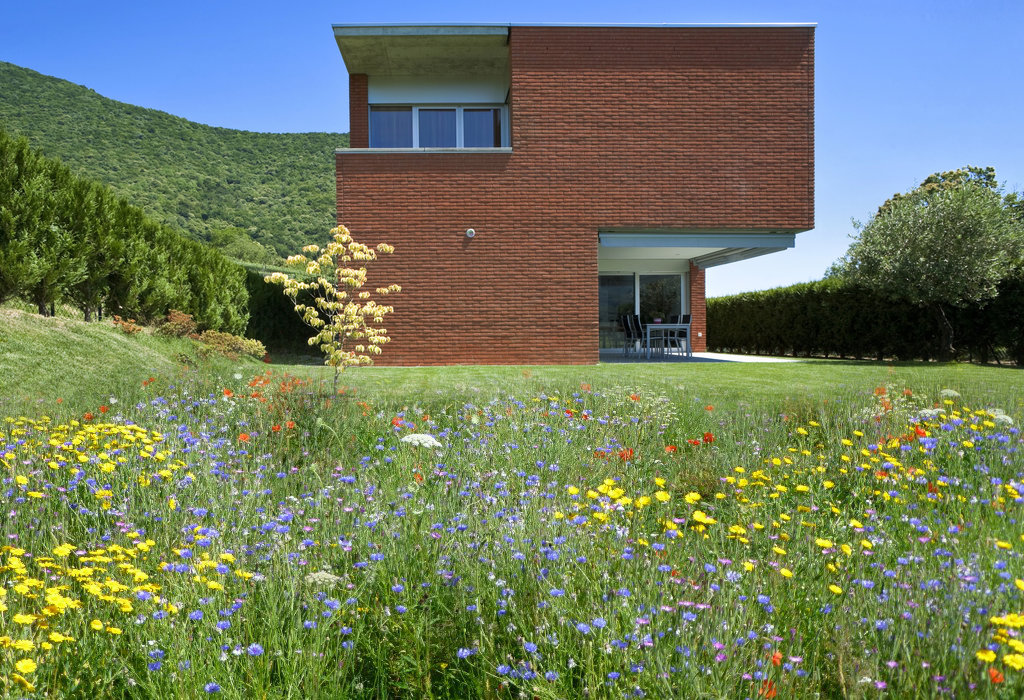bloemenweide tuinarchitect 2