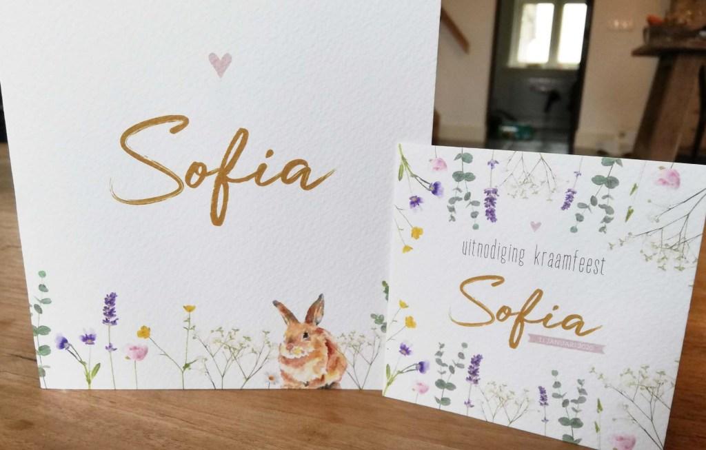 Kraamfeest-kaartje-konijn