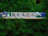 Barbara Murphy and Joanne Walsh, Beach