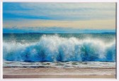 Carol Nash, East Beach Wave, 8x10 matted photo