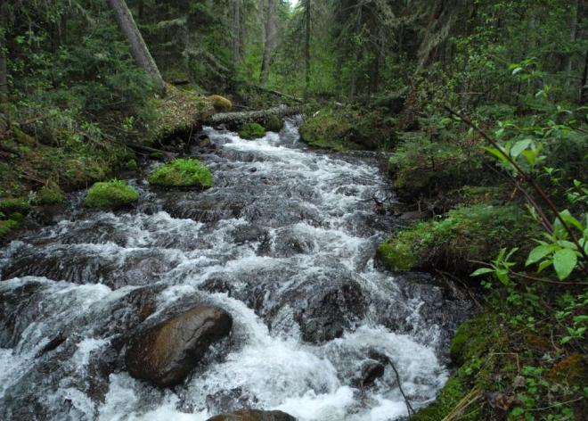 Falls leading into Grass River
