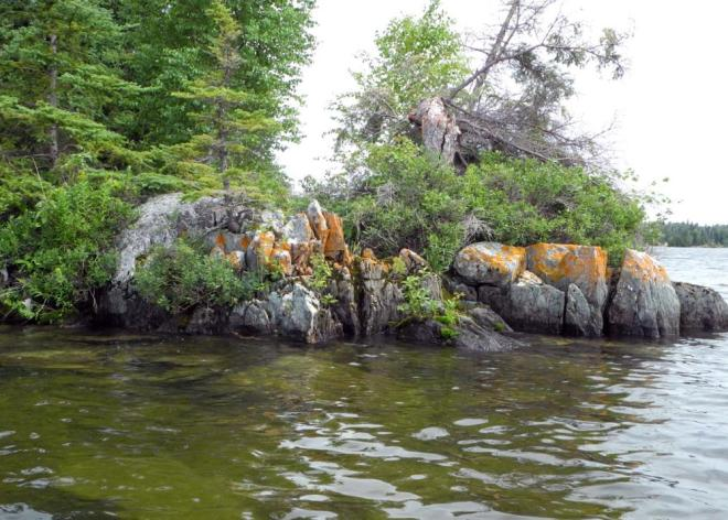 Bakers Narrows shoreline