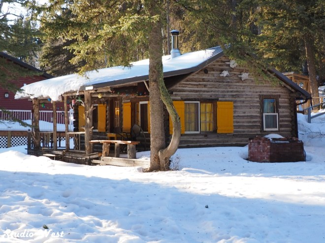 Cypress Hills Provincial Park