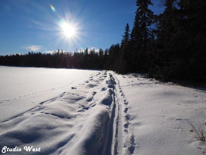 Prince Albert National Park cross country skiing