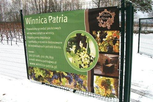 Patria - styczeń 2015 Studio Wina