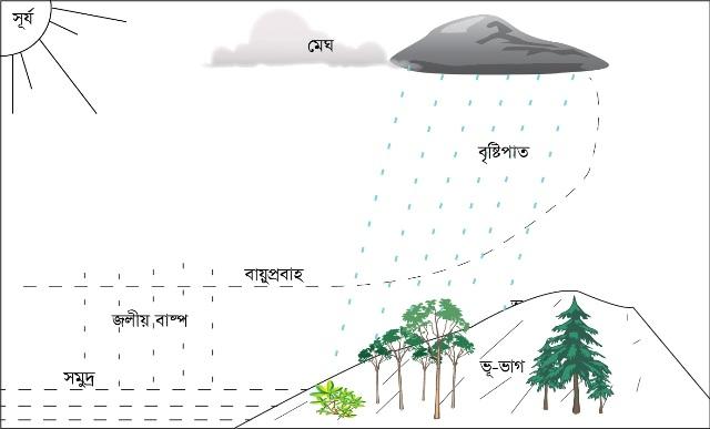 আবহাওয়া ও জলবায়ু : এদের উপাদান ও নিয়ামক   Weather and Climate