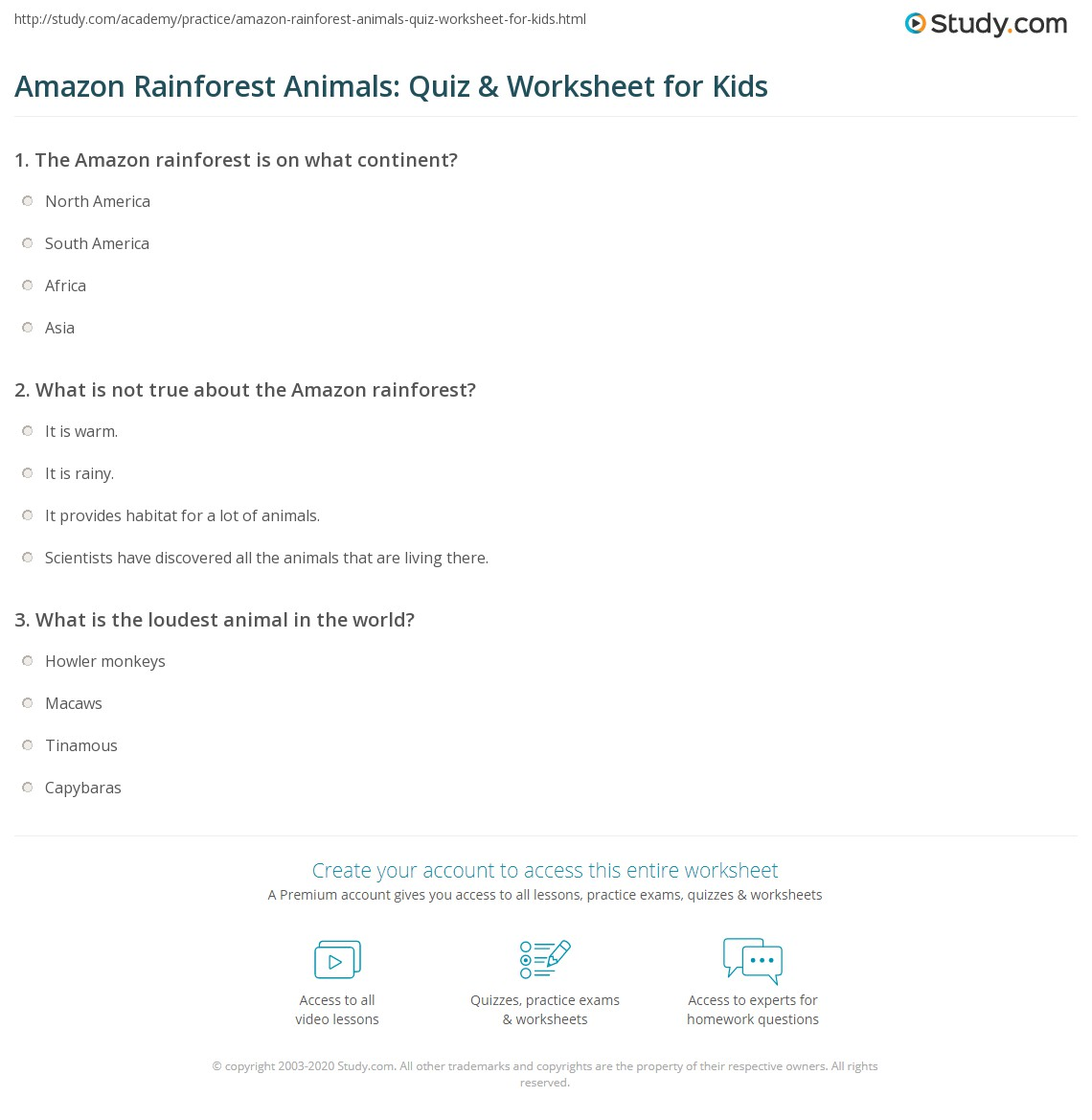 Amazon Rainforest Animals Quiz Amp Worksheet For Kids