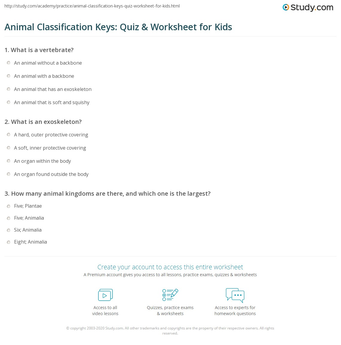 Animal Classification Keys Quiz Amp Worksheet For Kids