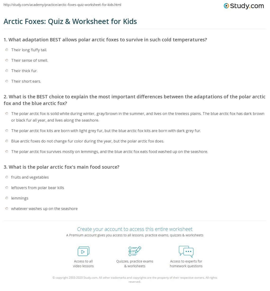 Arctic Foxes Quiz Amp Worksheet For Kids