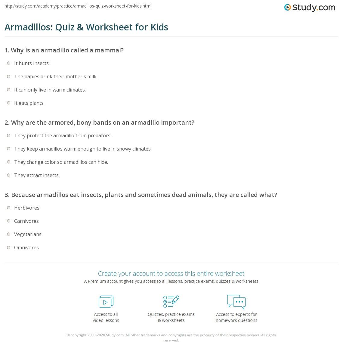 Armadillos Quiz Amp Worksheet For Kids