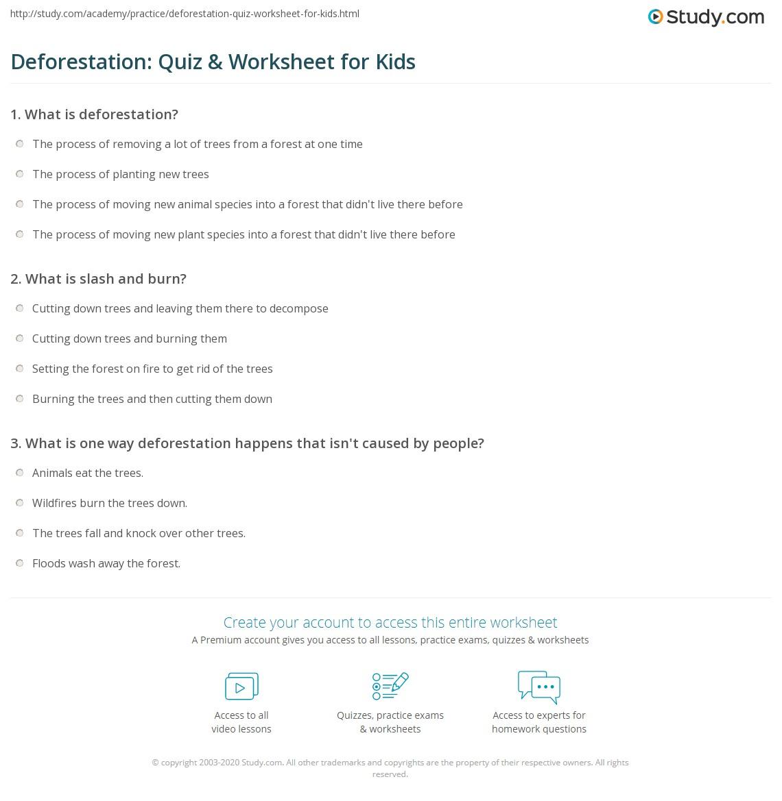 Deforestation Quiz Amp Worksheet For Kids