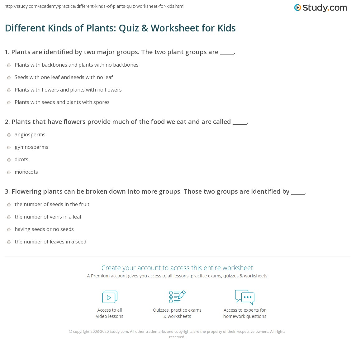 Different Kinds Of Plants Quiz Amp Worksheet For Kids