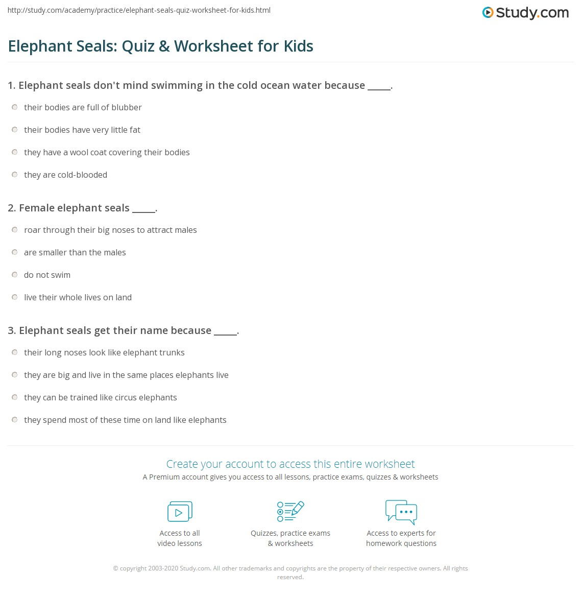 Elephant Seals Quiz Amp Worksheet For Kids