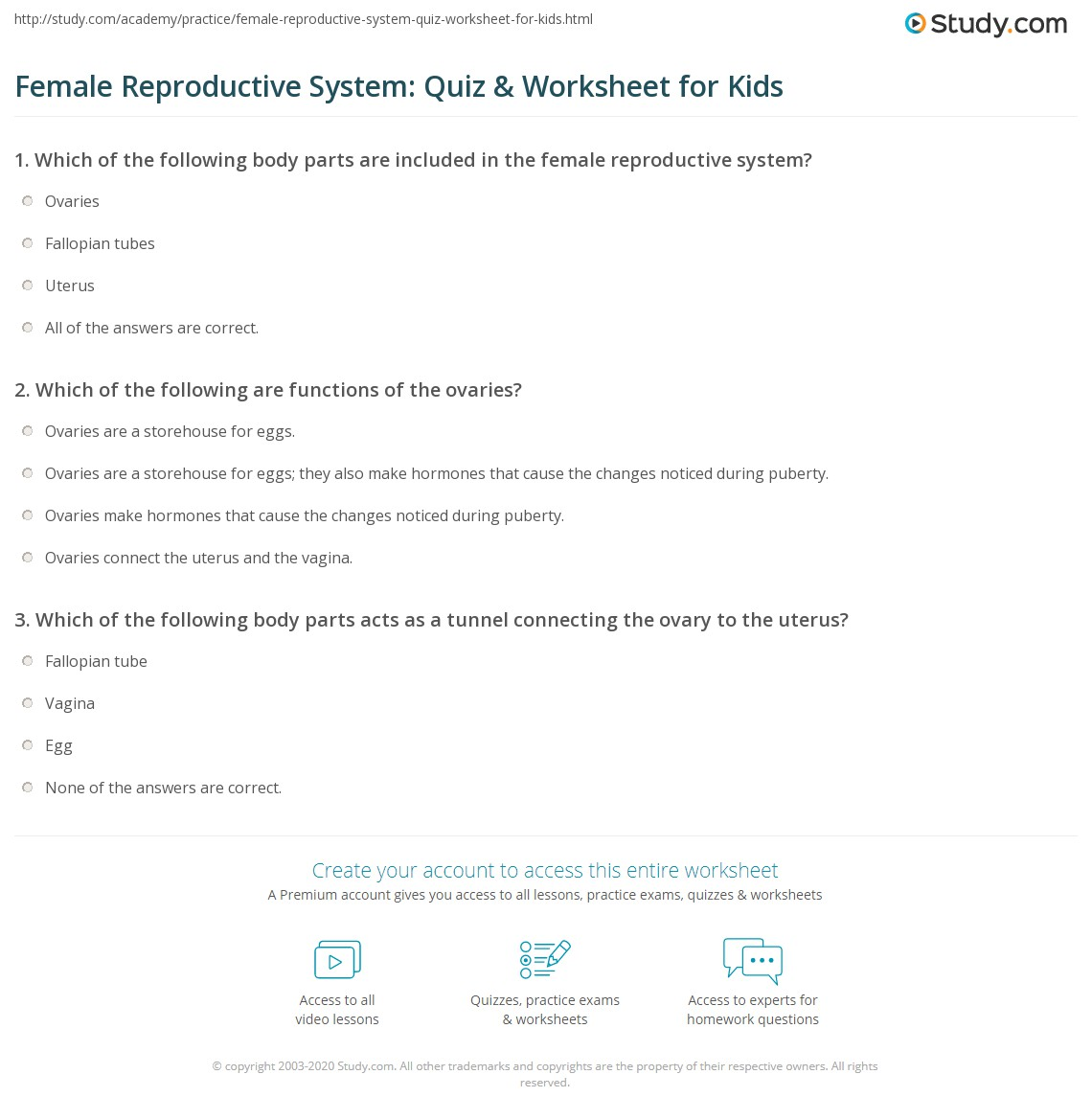 Female Reproductive System Quiz Amp Worksheet For Kids