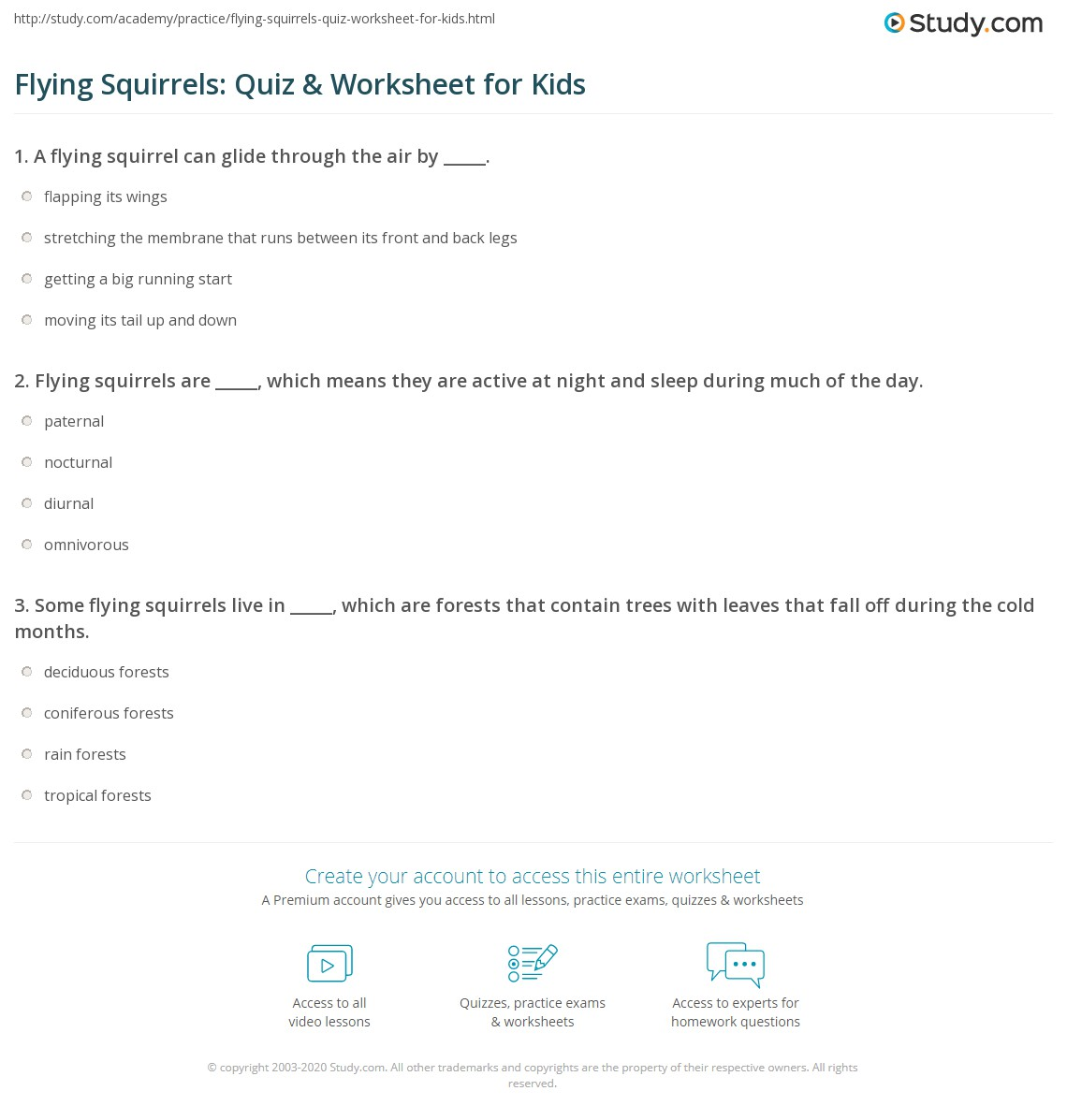 Flying Squirrels Quiz Amp Worksheet For Kids