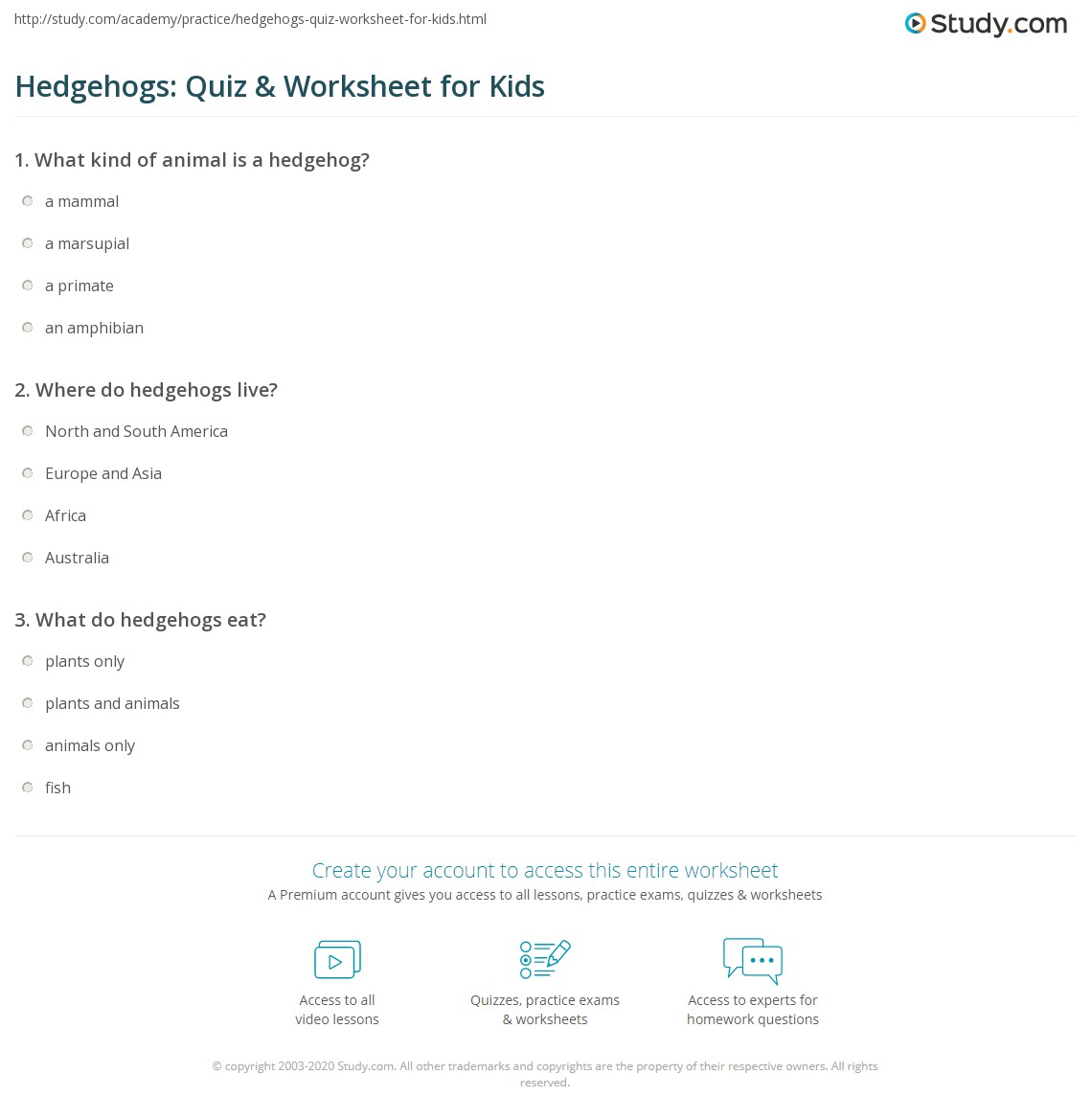 Hedgehogs Quiz Amp Worksheet For Kids