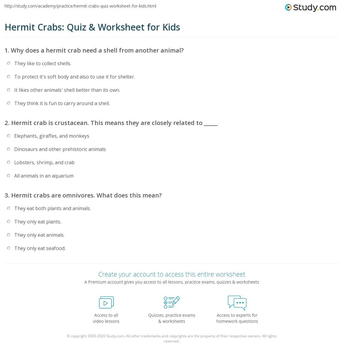 Hermit Crabs Quiz Amp Worksheet For Kids