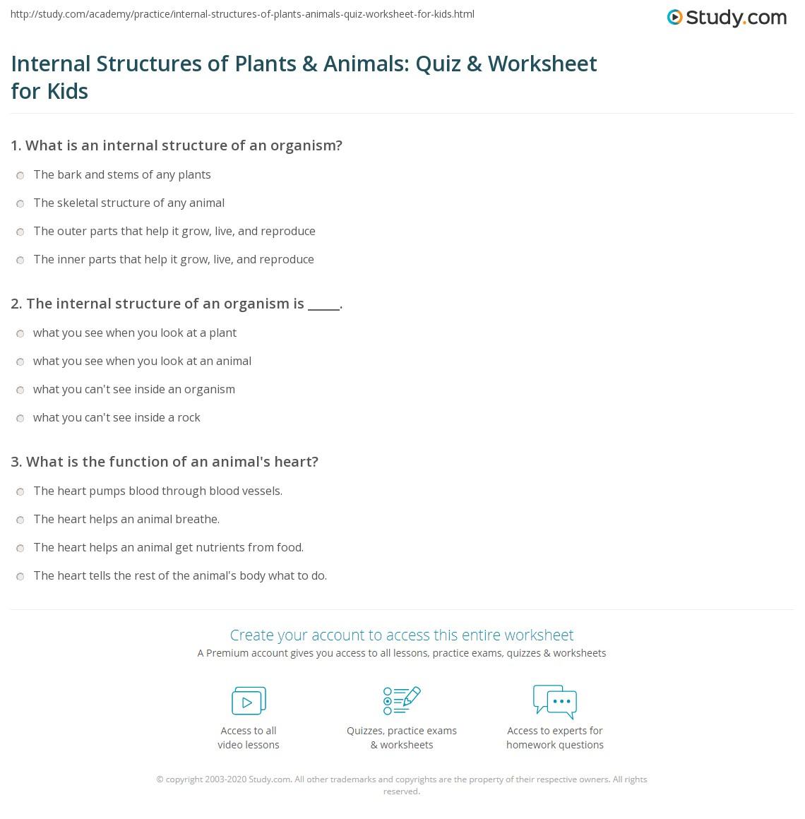 Internal Structures Of Plants Amp Animals Quiz Amp Worksheet