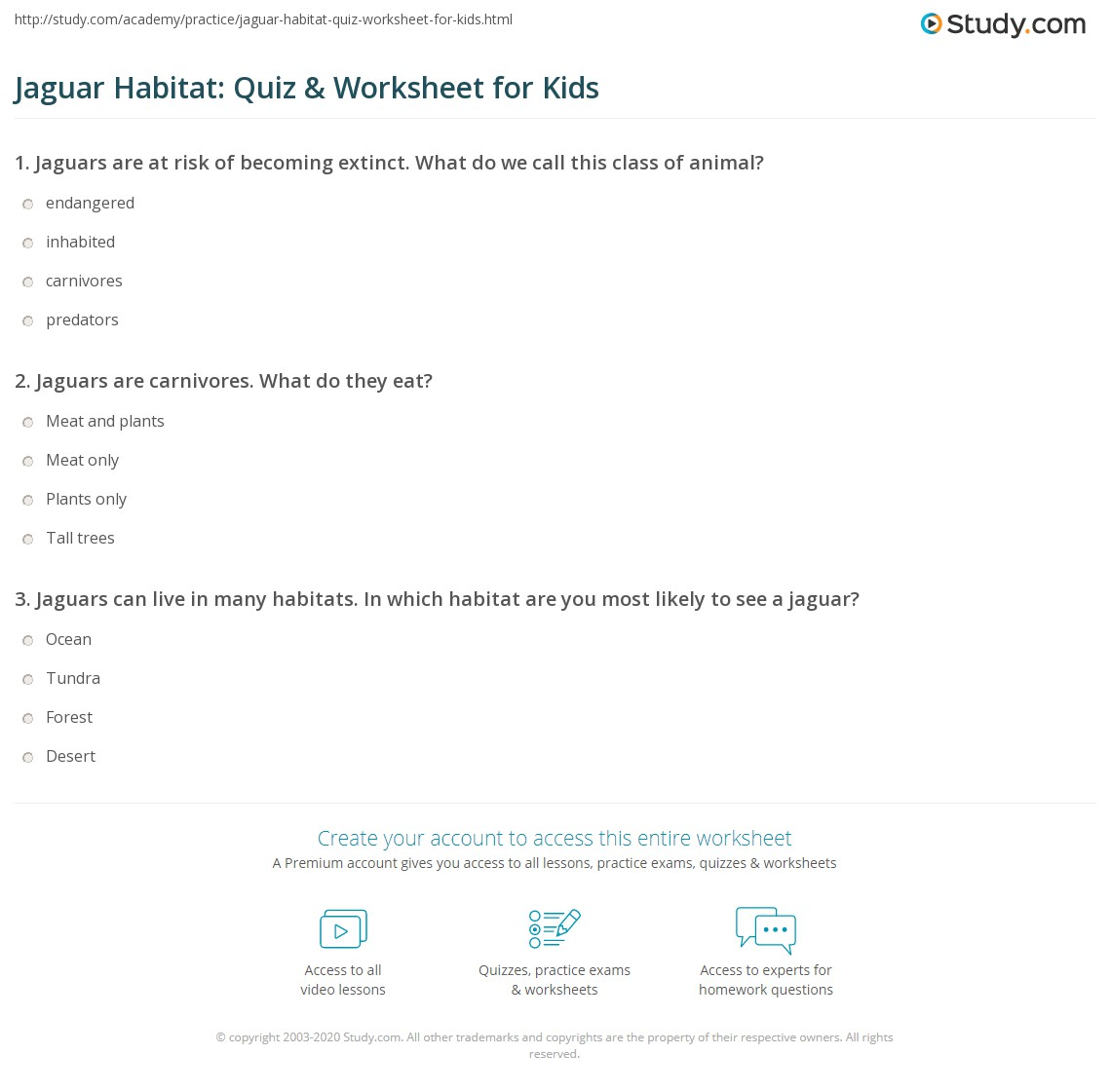 Jaguar Habitat Quiz Amp Worksheet For Kids