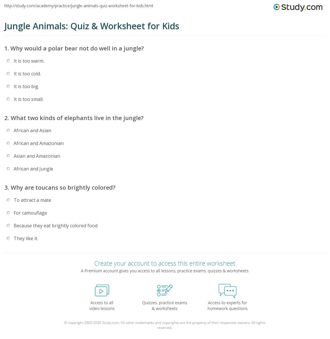 Jungle Animals Quiz Amp Worksheet For Kids