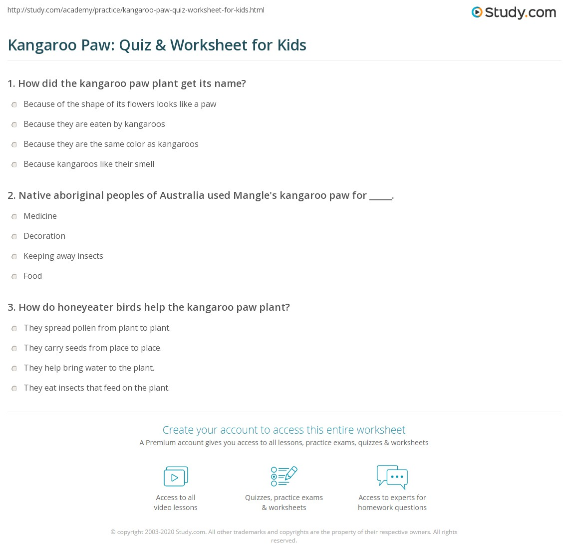 Kangaroo Paw Quiz Amp Worksheet For Kids