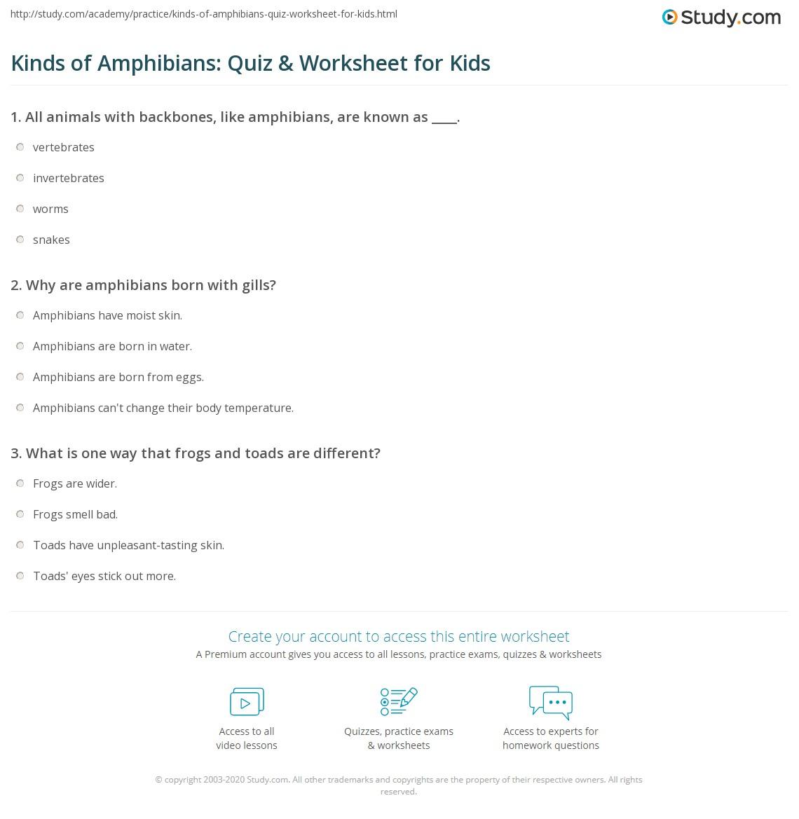 Kinds Of Amphibians Quiz Amp Worksheet For Kids