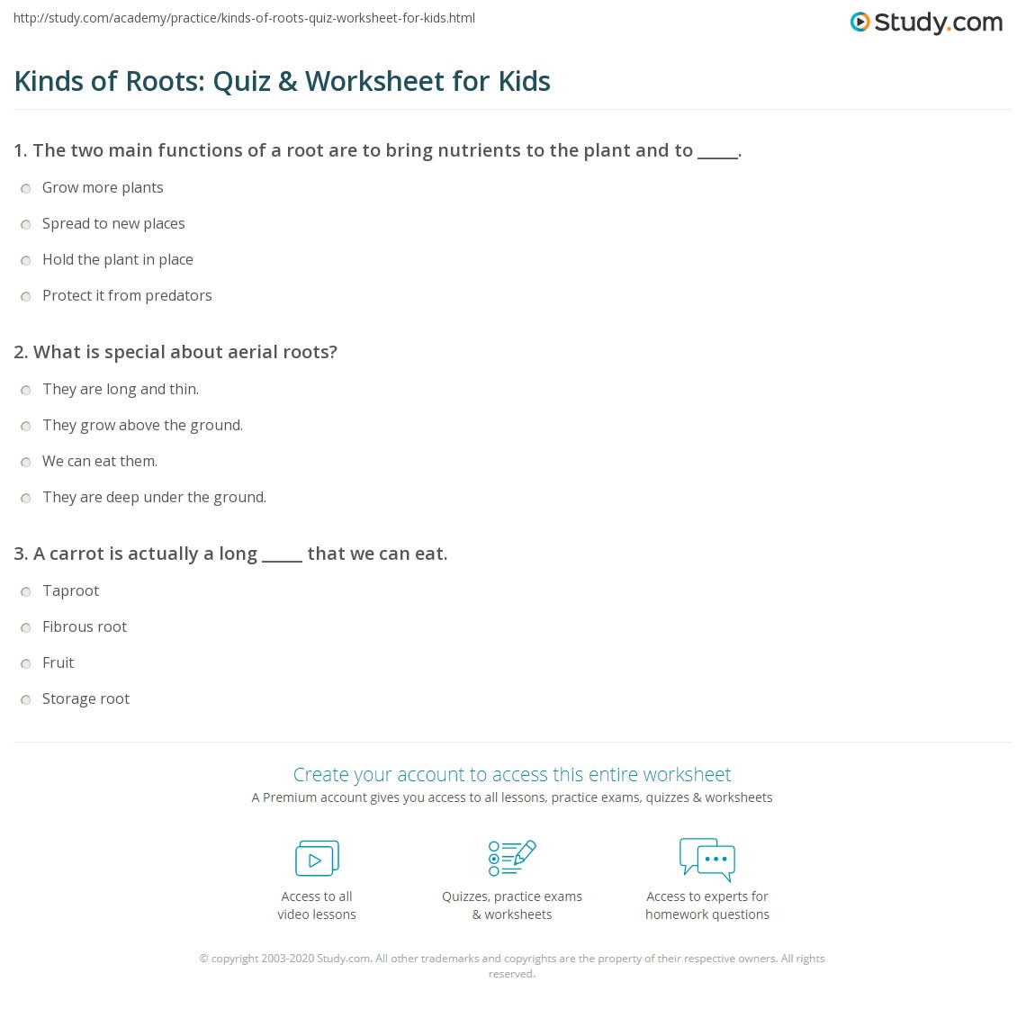 Kinds Of Roots Quiz Amp Worksheet For Kids