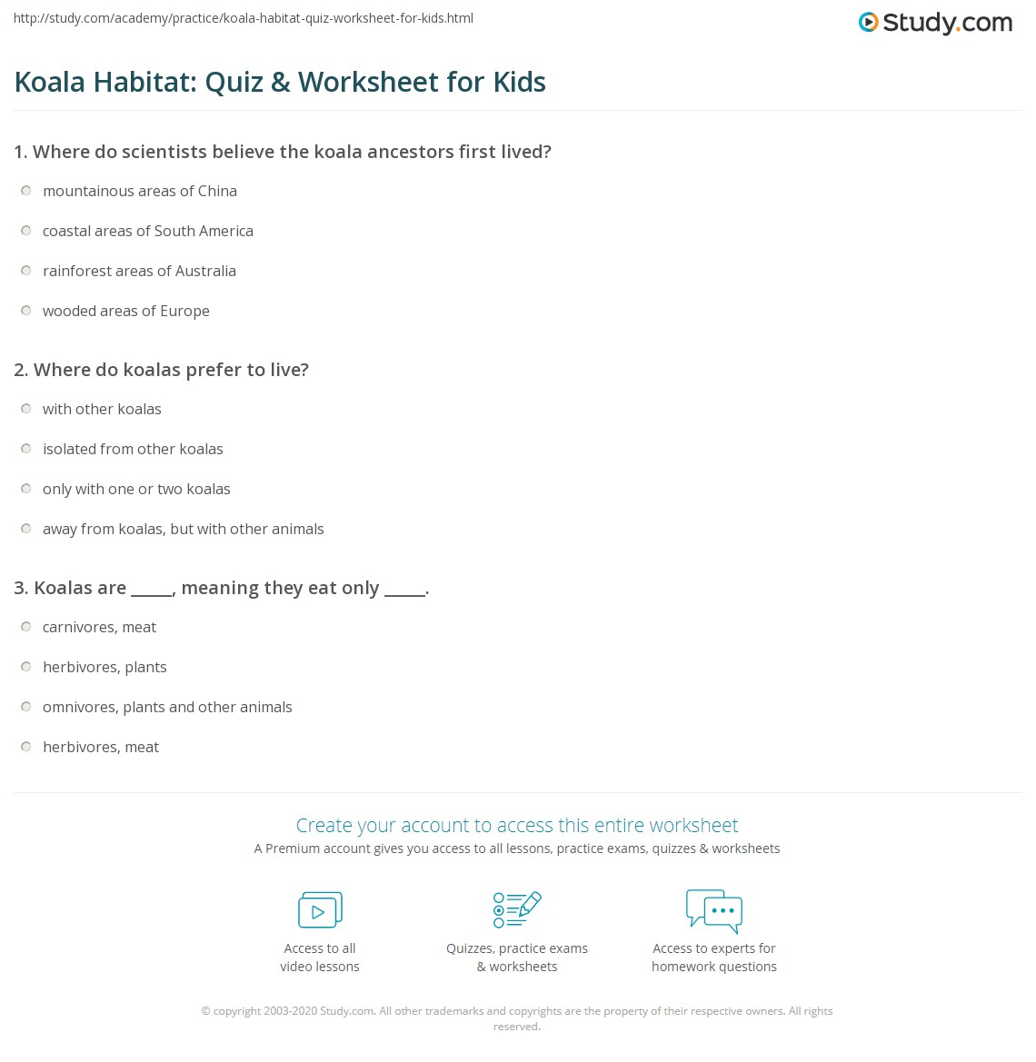 Koala Habitat Quiz Amp Worksheet For Kids
