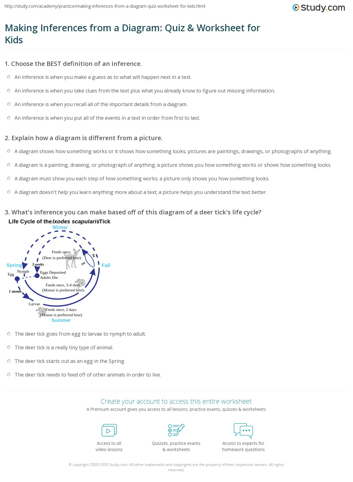 Making Inferences From A Diagram Quiz Amp Worksheet For Kids