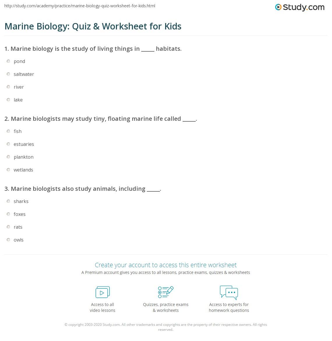 Marine Biology Quiz Amp Worksheet For Kids