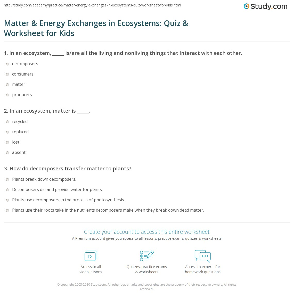 M Tter Energy Exch Nges Ecosystems Quiz W Ksheet Kids