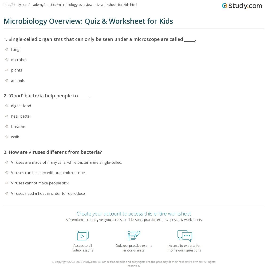 Microbiology Overview Quiz Amp Worksheet For Kids