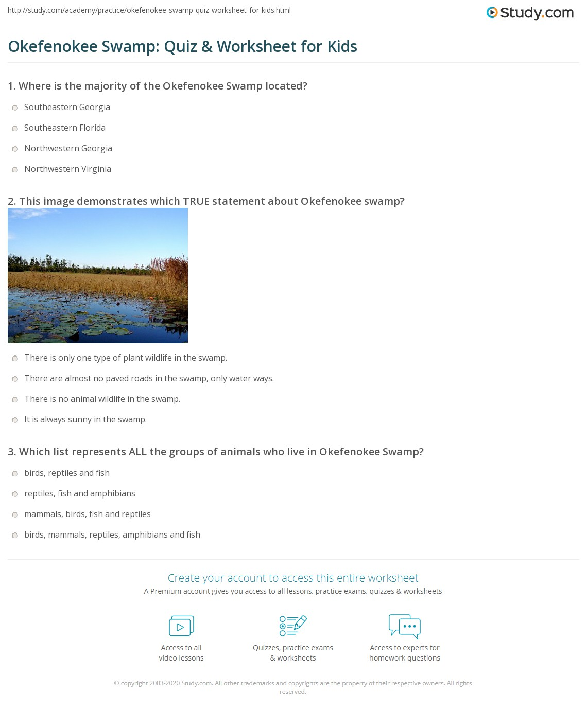 Okefenokee Swamp Quiz Amp Worksheet For Kids