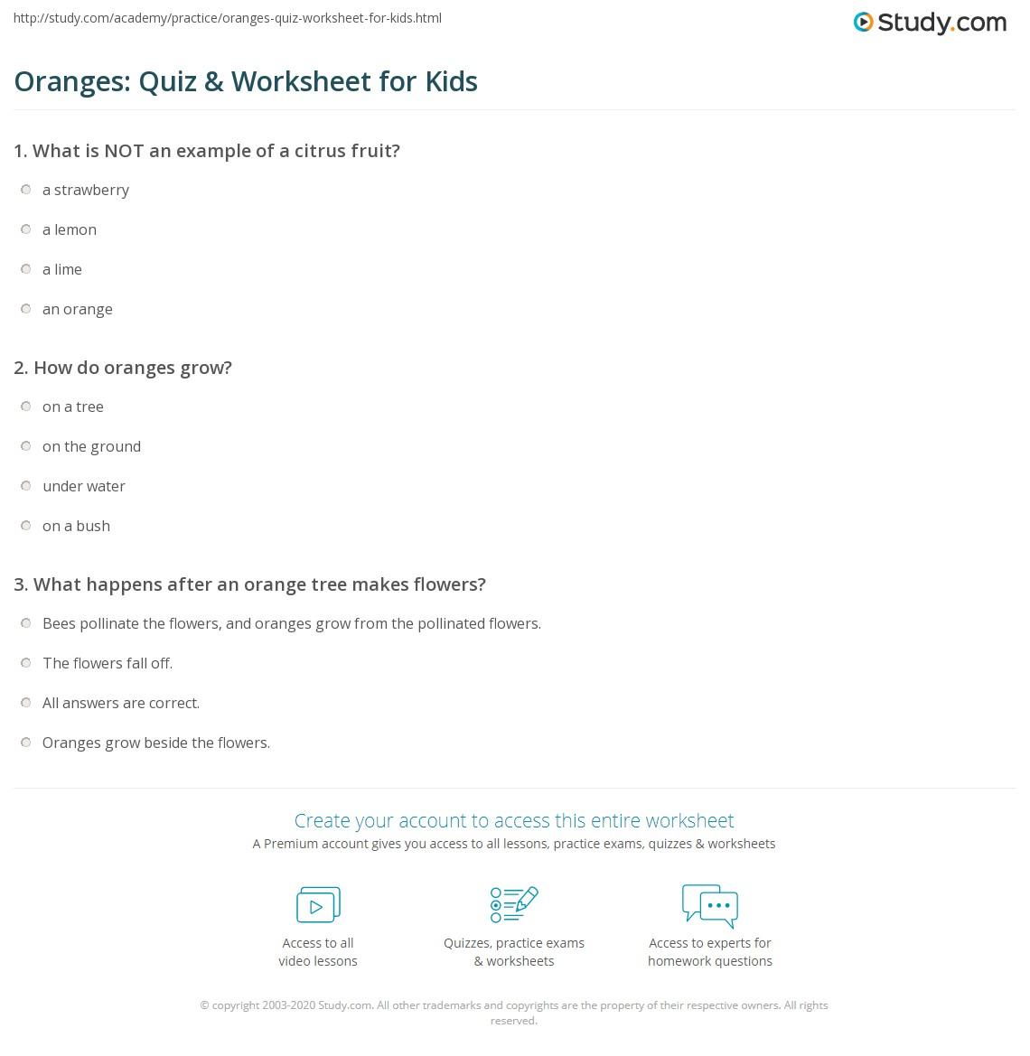 Oranges Quiz Amp Worksheet For Kids