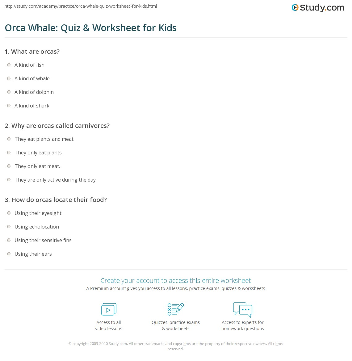 Orca Whale Quiz Amp Worksheet For Kids