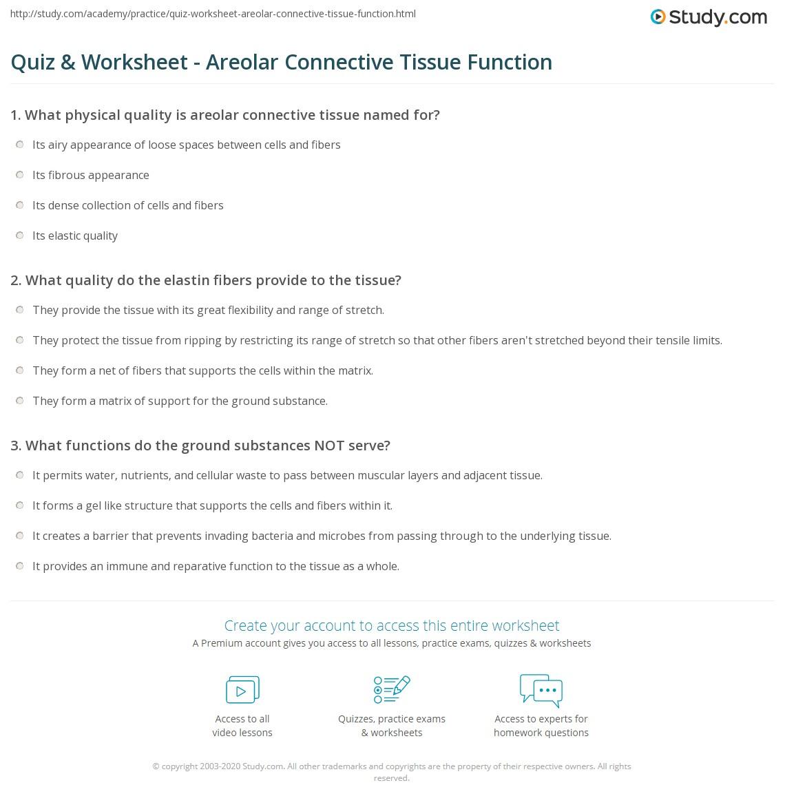 Worksheet Connective Tissue Worksheet Grass Fedjp Worksheet Study Site