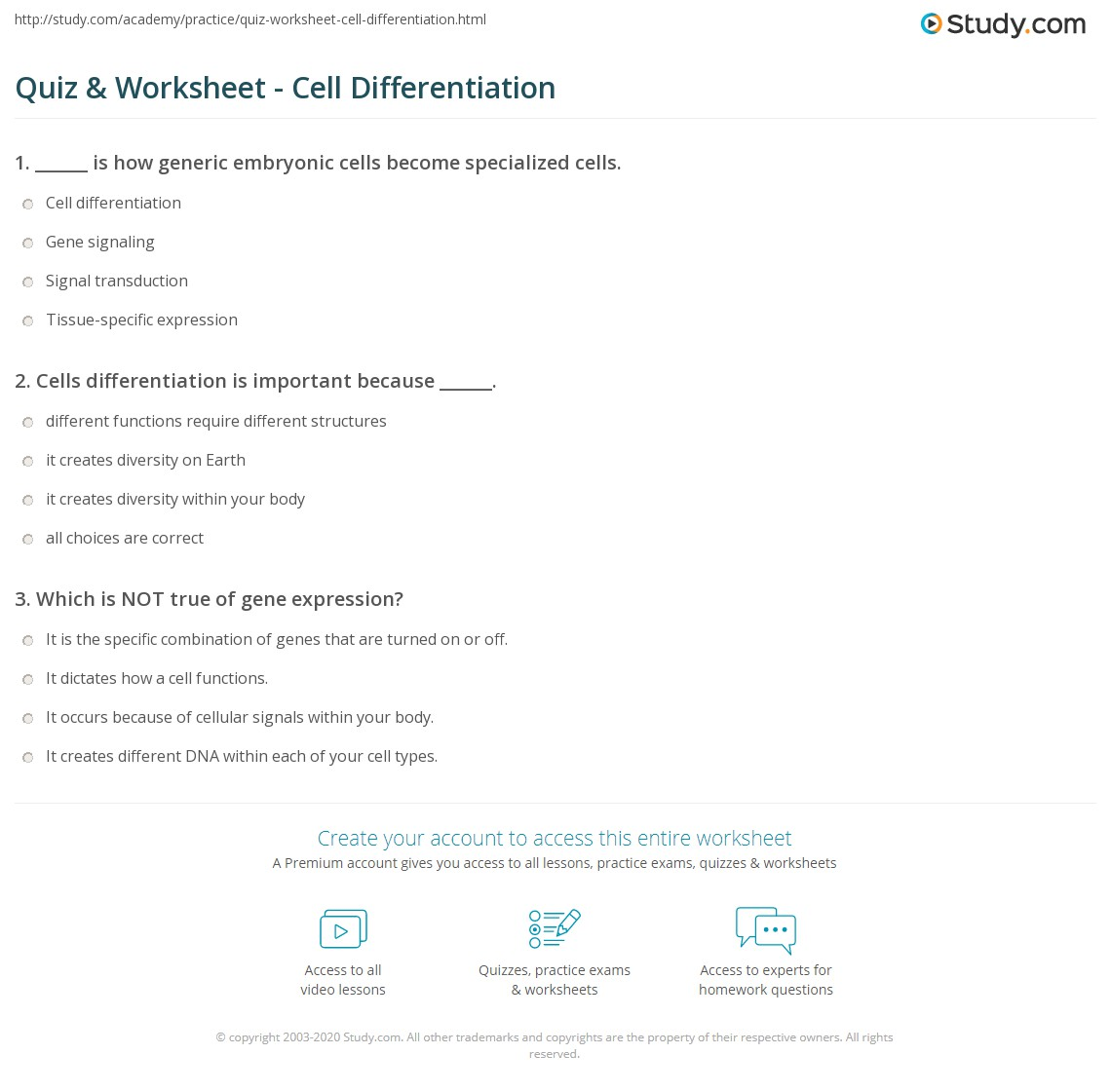 Stem Cell Worksheet Answers