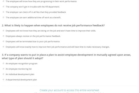 Performance Feedback Examples Performance Best Free Fillable Forms
