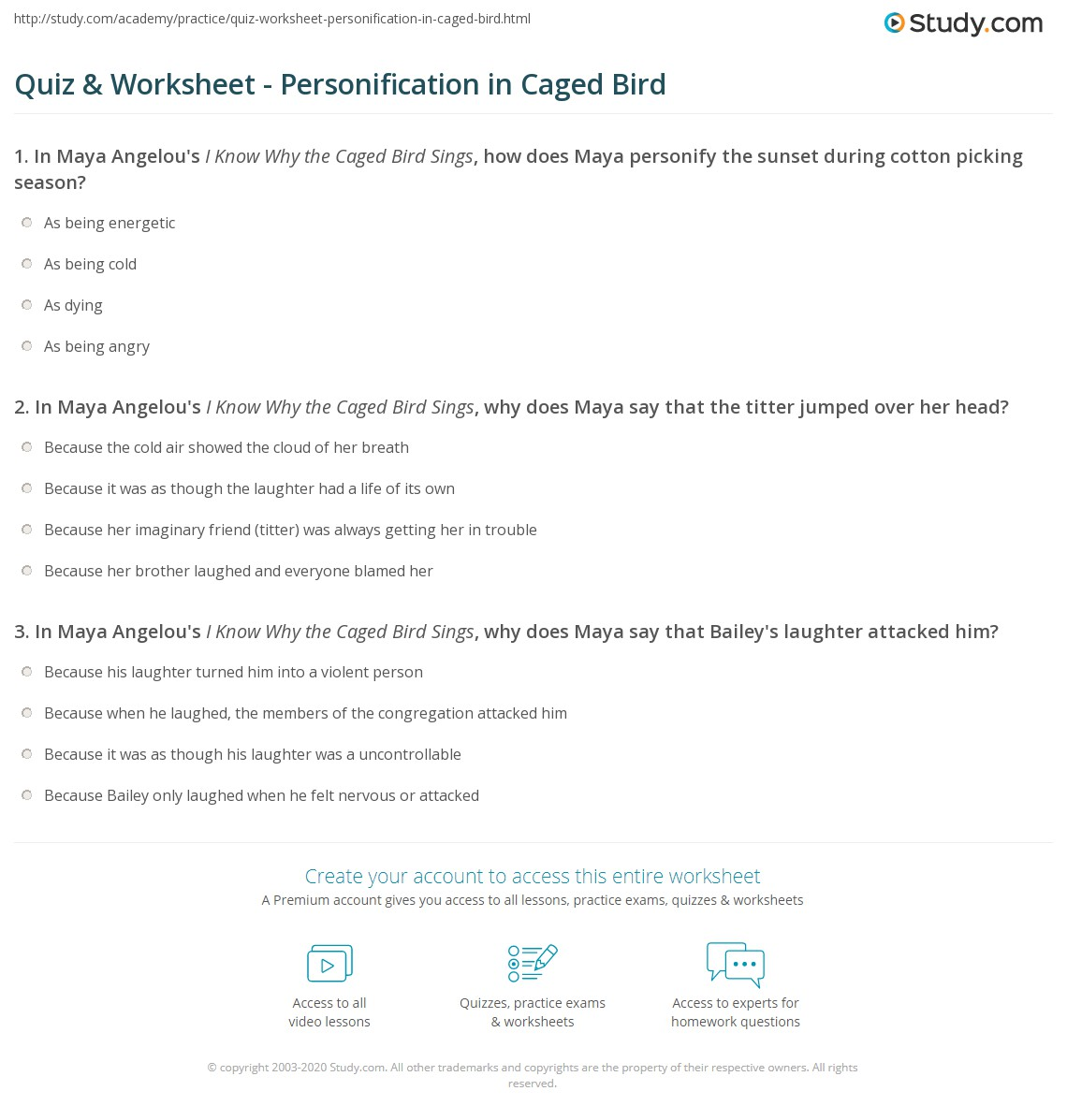 Maya Angelou 2nd Grade Worksheet