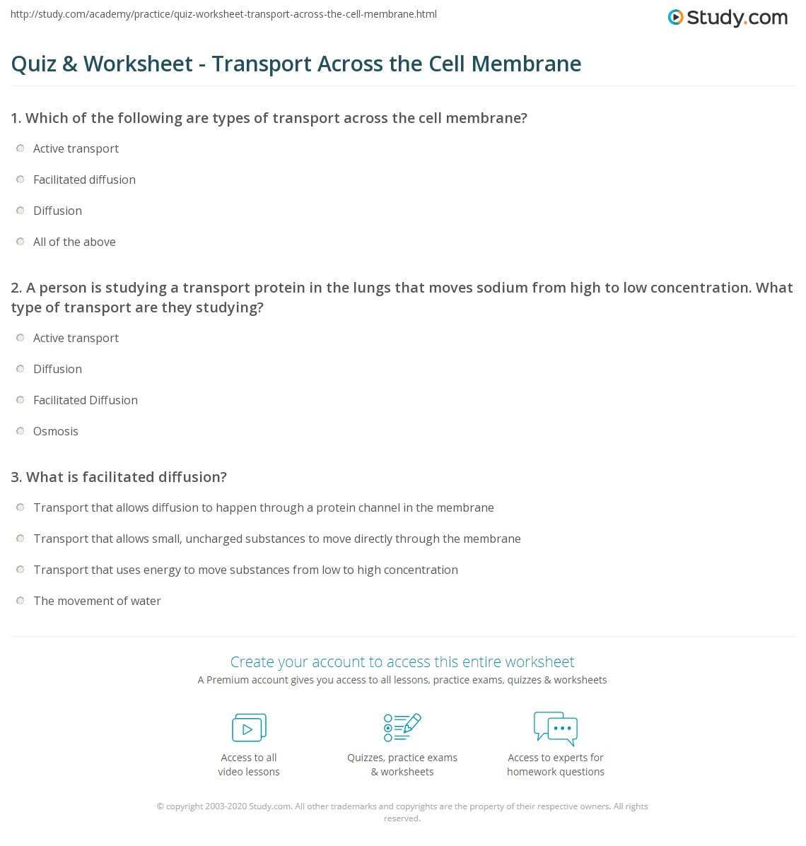 Movement Across The Cell Membrane Worksheet Answers
