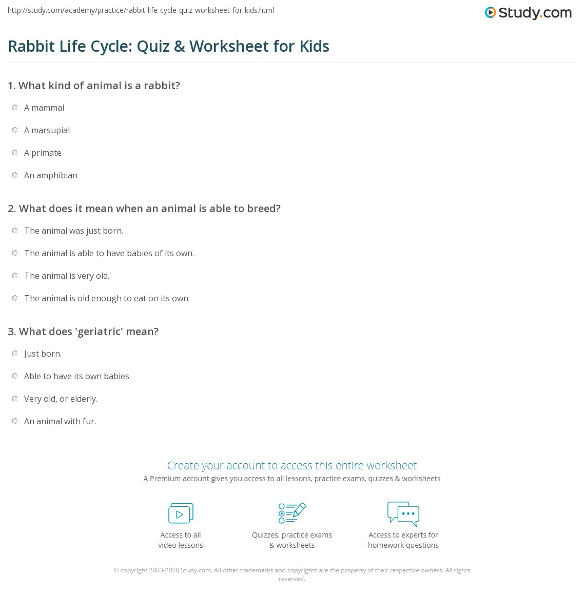 Rabbit Life Cycle Quiz Amp Worksheet For Kids