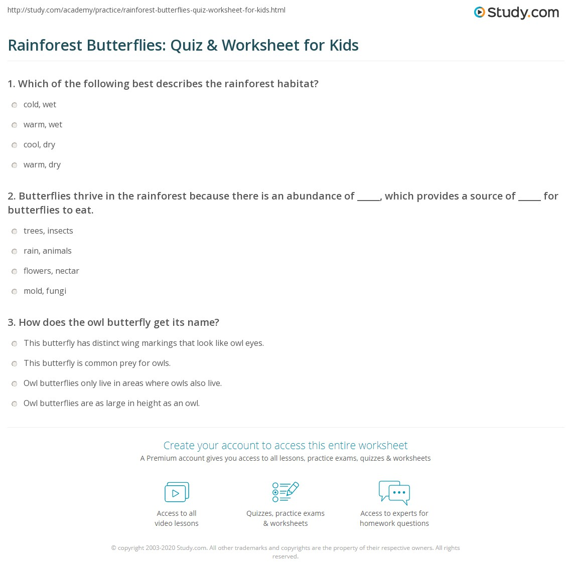 Rainforest Butterflies Quiz Amp Worksheet For Kids