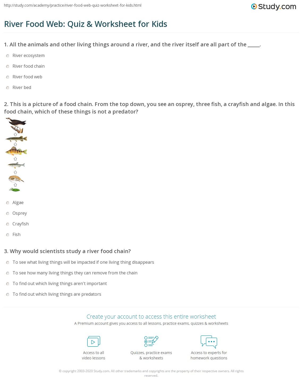 River Food Web Quiz Amp Worksheet For Kids