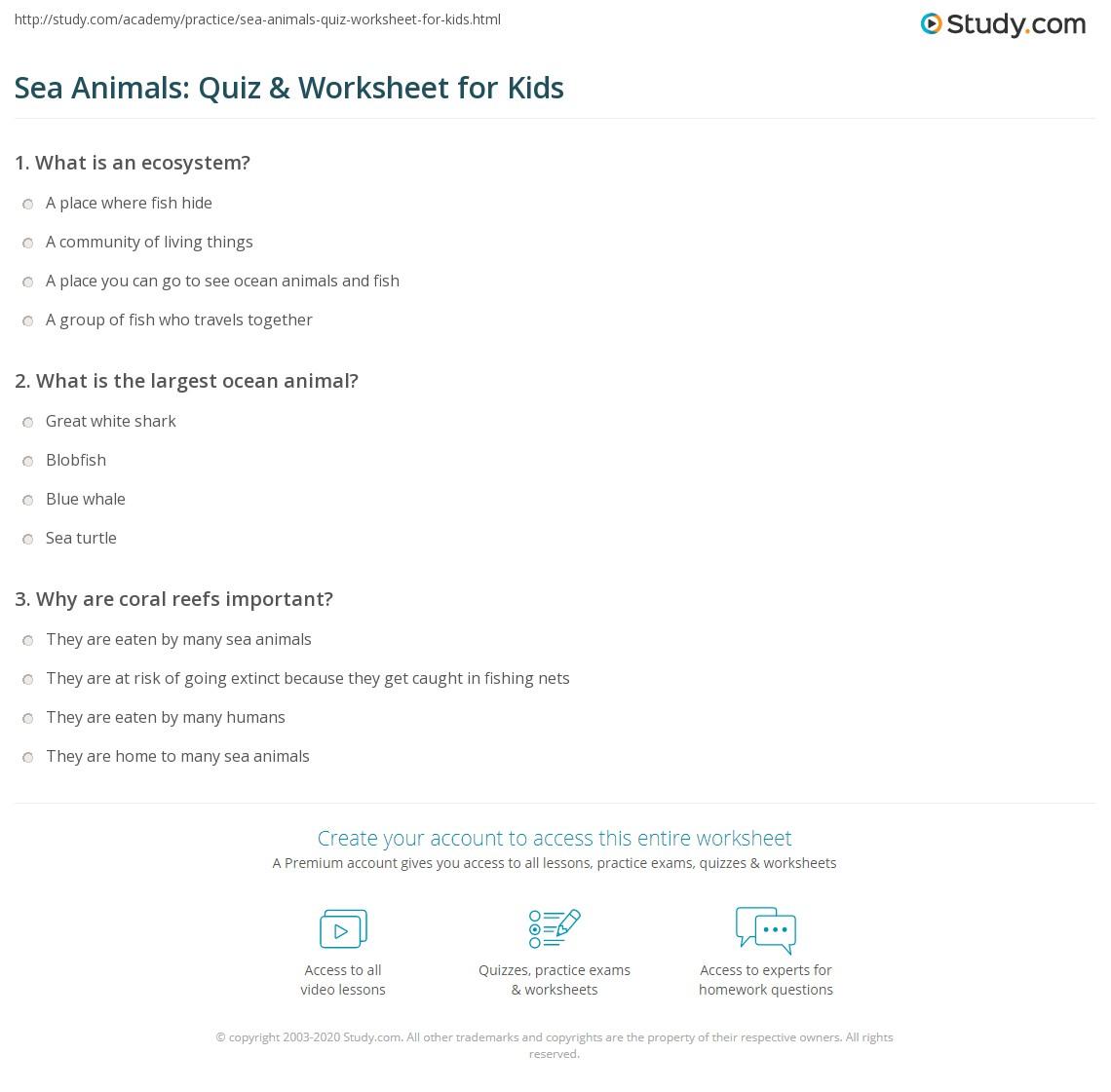 Sea Animals Quiz Amp Worksheet For Kids