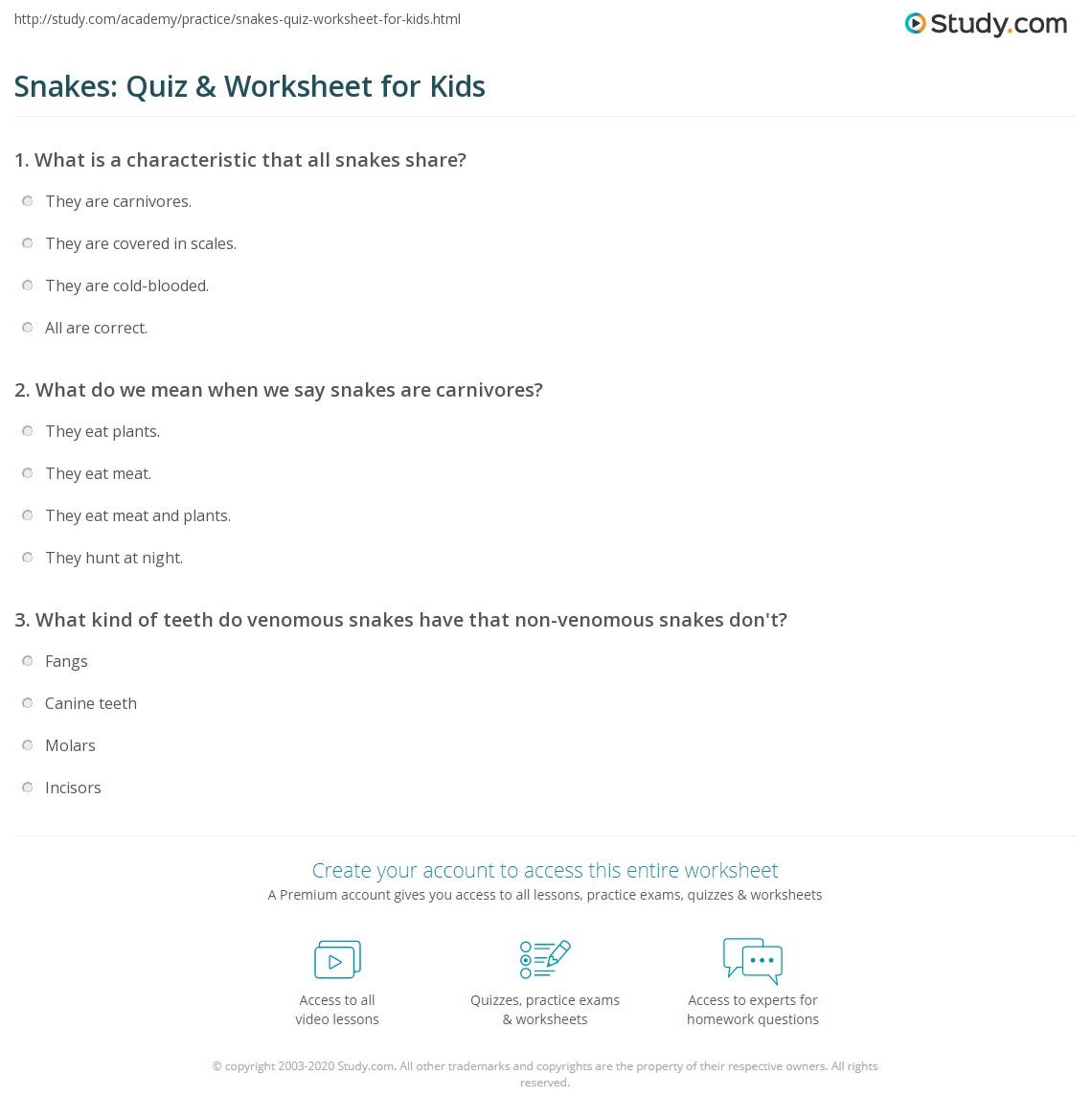 Snakes Quiz Amp Worksheet For Kids