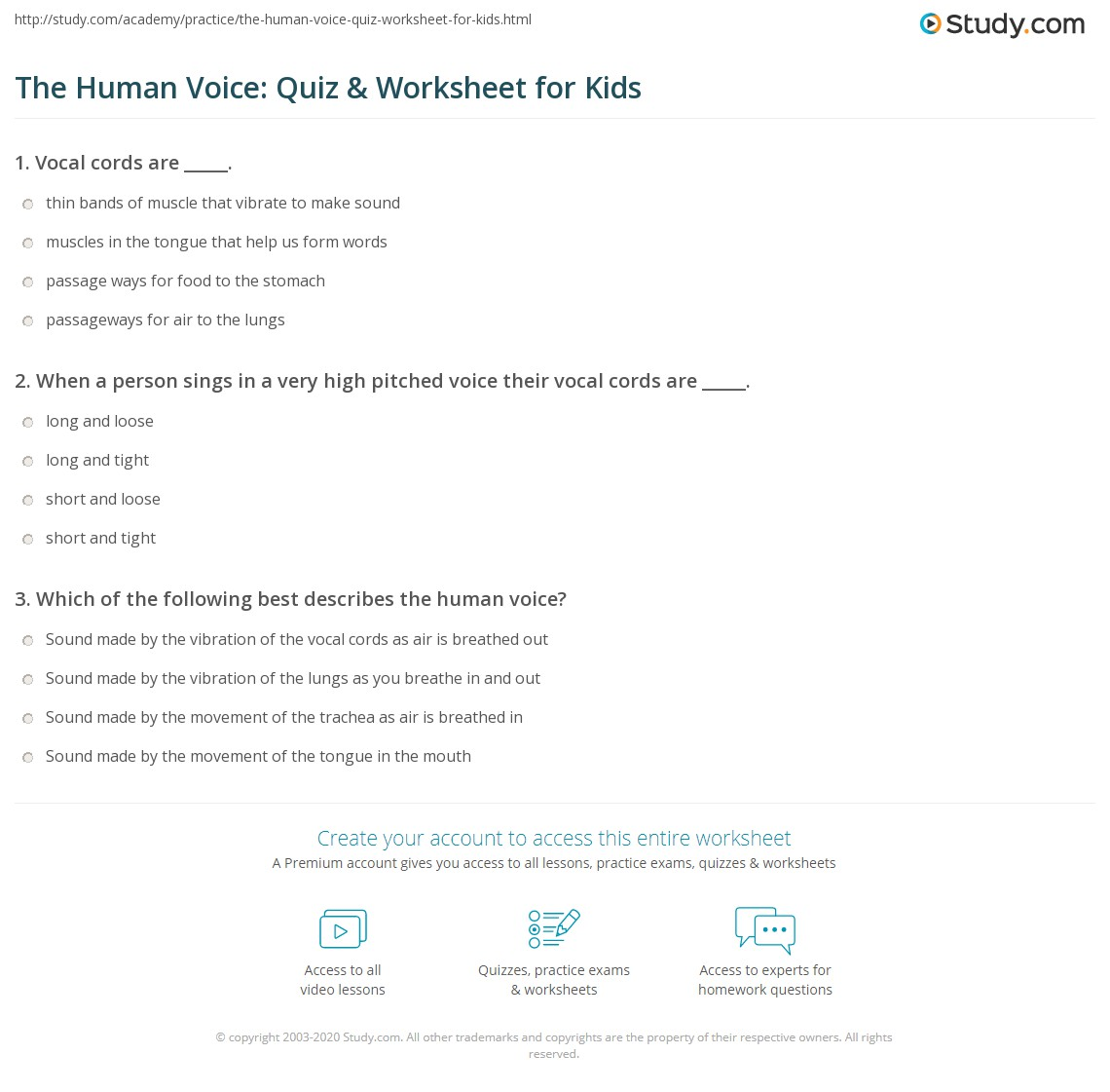 The Human Voice Quiz Amp Worksheet For Kids