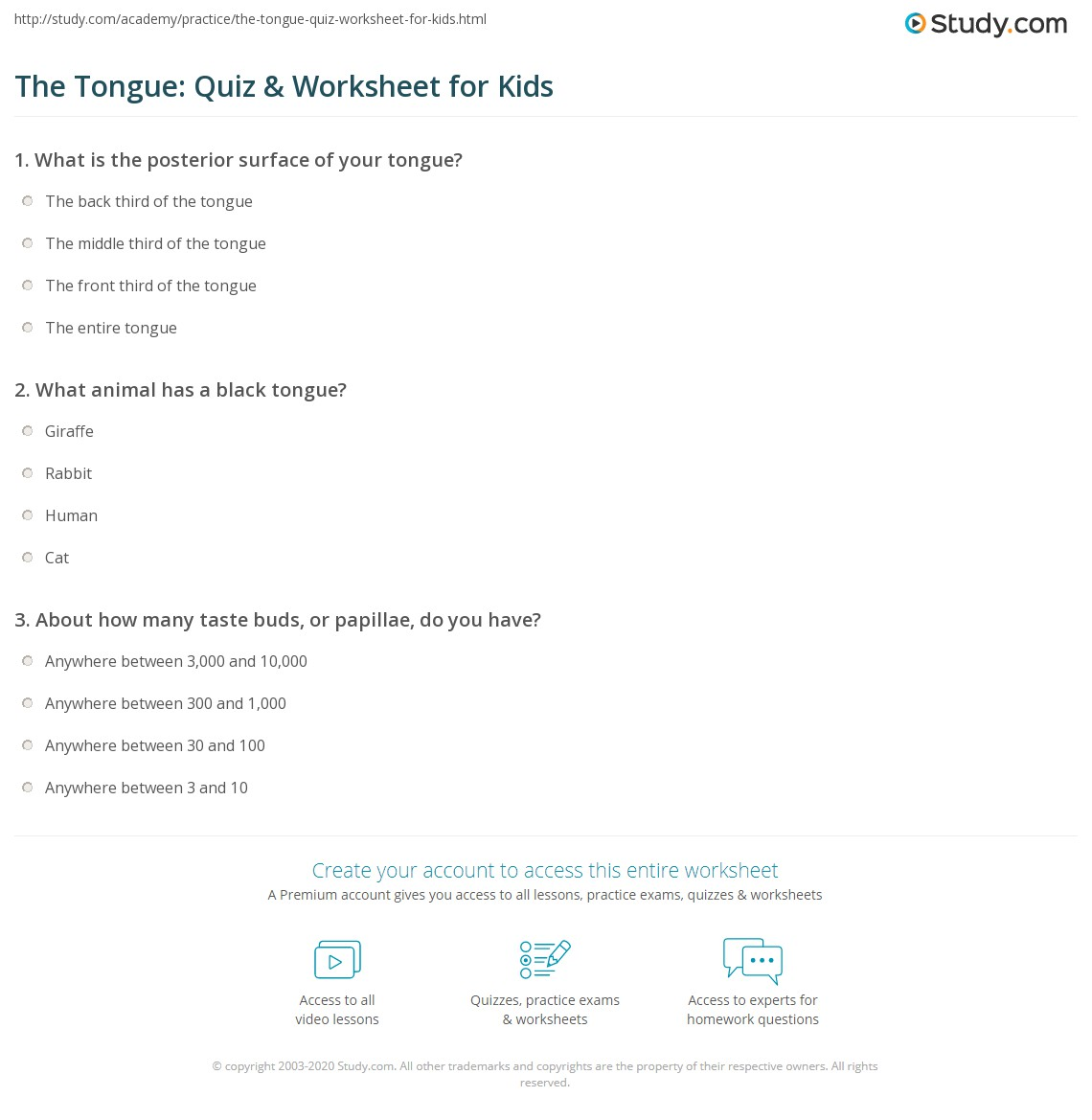 The Tongue Quiz Amp Worksheet For Kids